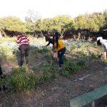 Η ομάδα γυναικών του Κοινωνικού Κέντρου του Νέου Κόσμου σκέφτεται και δρα «πράσινα» για το περιβάλλον